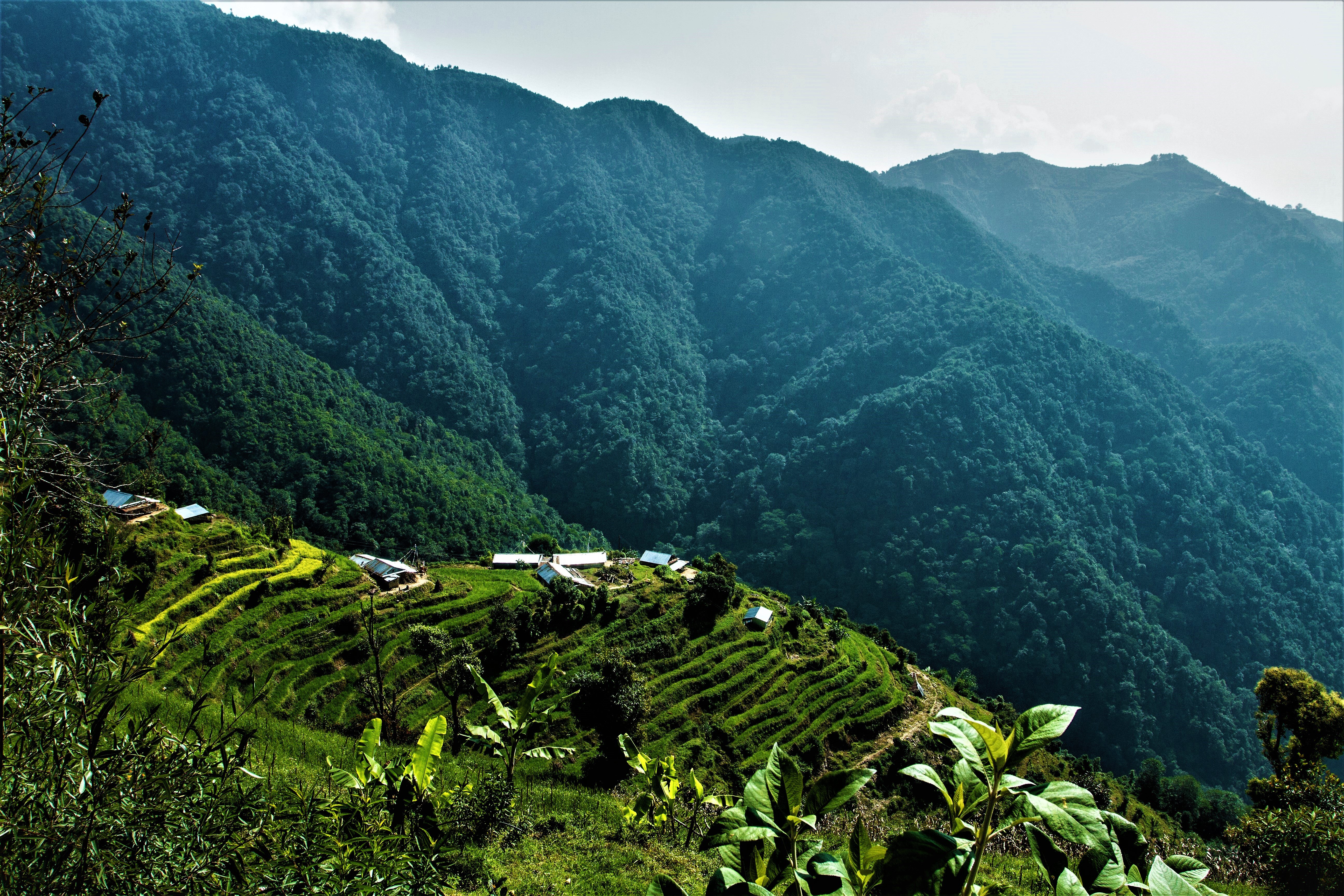 img/village-panorama.jpg